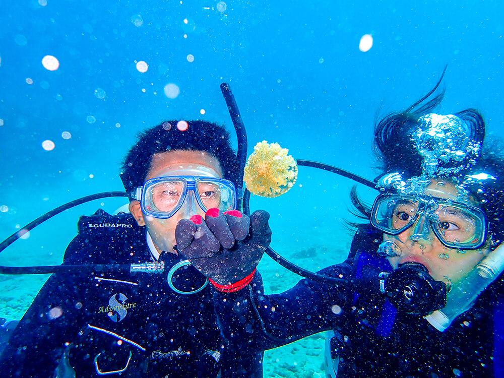 Ishigakijima Diving