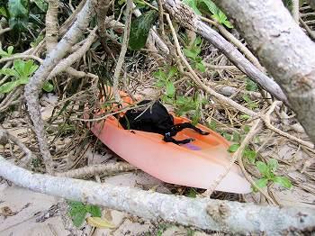 沖縄県サンゴ礁保全活動支援事業4