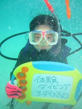 体験ダイビング4