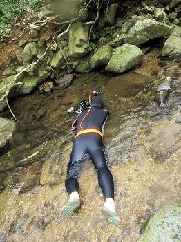 渓流ダイビング1