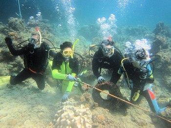 海中ゴミ清掃3