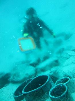 竹富海底温泉