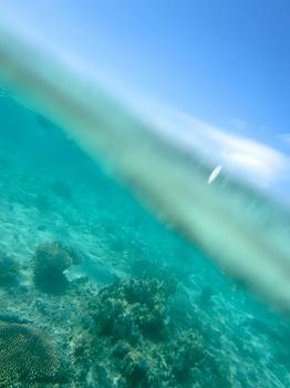 半水面写真2