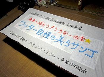 沖縄県サンゴ礁保全活動支援事業