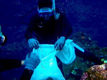 海中ゴミ清掃7