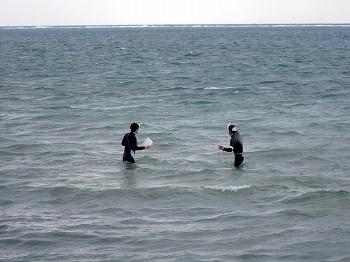 サンゴ礁水平透明度モニタリング調査4