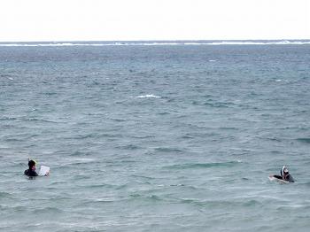 サンゴ礁水平透明度モニタリング調査5