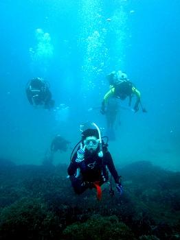 ダイビング2