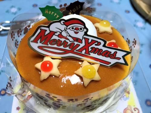 ペット用ケーキ1