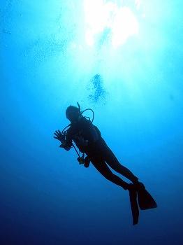 遠征ダイビング3