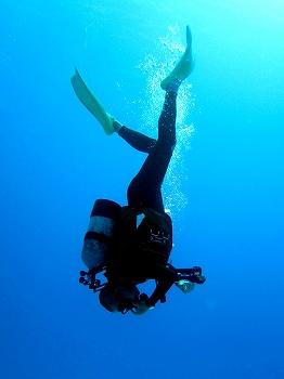 遠征ダイビング5