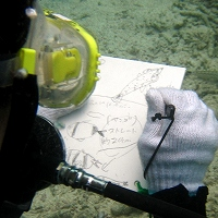 八重山商工海洋講習3