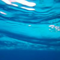 水中写真4