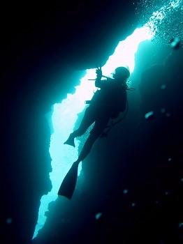 遠征ダイビング