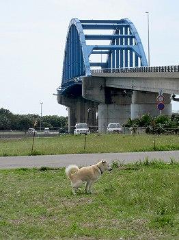 石垣島サザンゲートブリッジ1