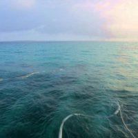 石西礁湖1