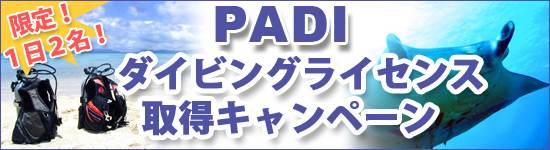 PADIライセンス取得キャンペーン