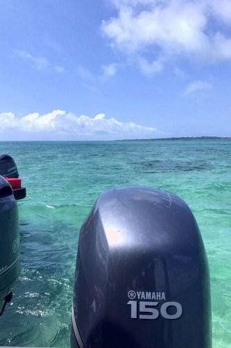 修学旅行体験ダイビング