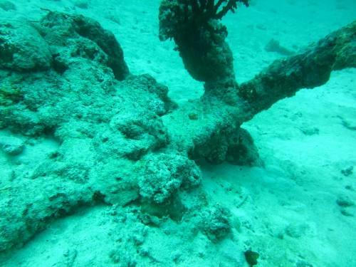 石垣島海底遺跡5