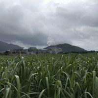 石垣島製糖工場