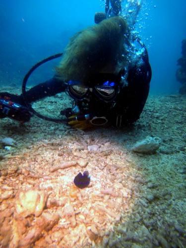 水中カメラ撮影
