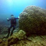 波にも負けず名蔵湾で体験ダイビング!